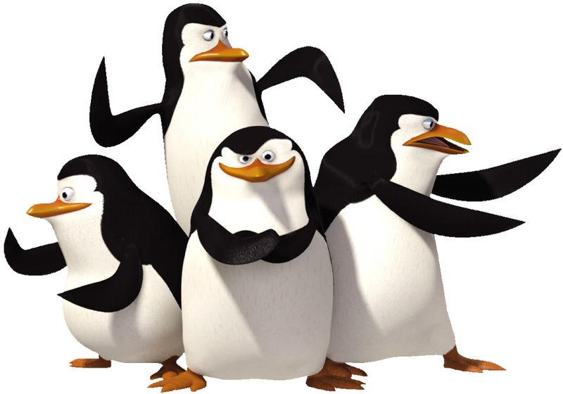 800px-Madagasca_Penguins.jpg